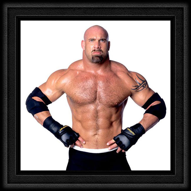 bill-goldberg1j